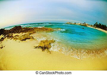 vista., fisheye, mujeres, méxico, seascape, isla