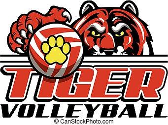 voleibol, tiger