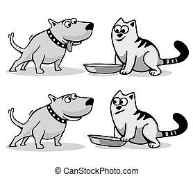 wants, alimento., cão, comer, gato