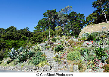 wellington, jardim botanic