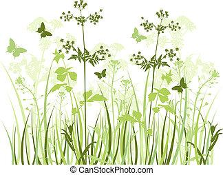 wildflowers, prado